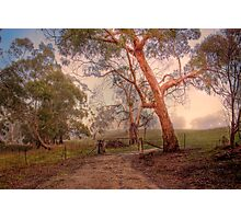 Misty Hills - Woodside, Adelaide Hills, South Australia Photographic Print