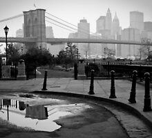 New York City  by Sean McDonald