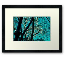 Morning Flowers by The Office Framed Print