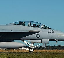 RAAF F/A-18F Super Hornet & Crew - Avalon 2011 by Bev Pascoe