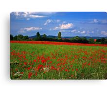 Poppy Field  (Early May) Canvas Print