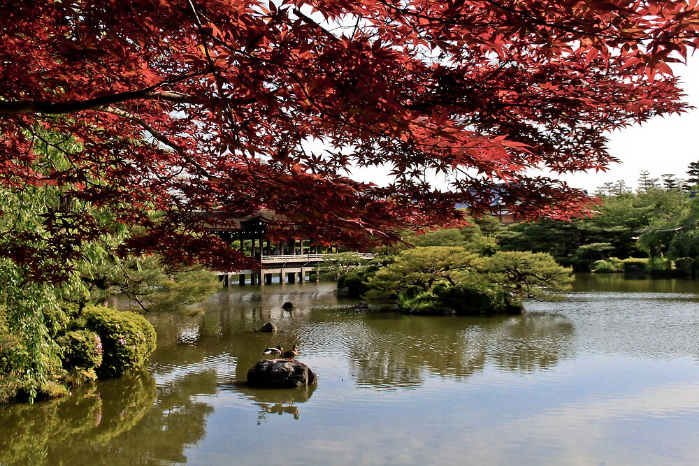 Water bliss - Kyoto by hawkea