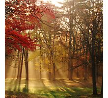 Sun Showers Photographic Print