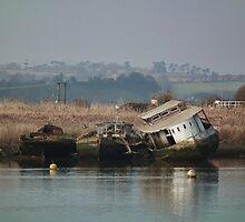 Not Very Seaworthy, Seen Better Days by lynn carter