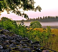 Morning mist  at 4.00 am, in Sweden by Marita Toftgard