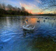 Sunset Blues by Yhun Suarez