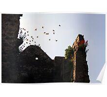 Castle Ruins, Ireland Poster
