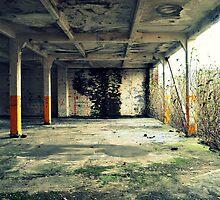 Concrete jungle by Ben Jones
