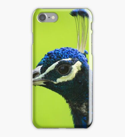 Head of a Peacock iPhone Case/Skin