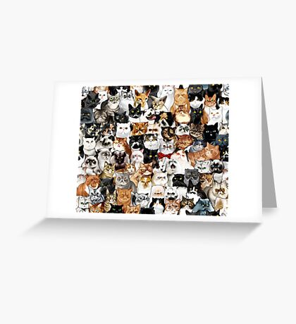 #Catminaproject by Jimiyo Greeting Card