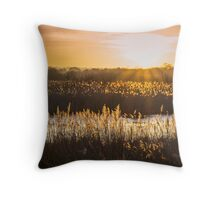 Sunset on the Somerset Levels Throw Pillow