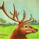 Dawn's stag by Hilary Robinson