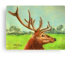 Dawn's stag Canvas Print