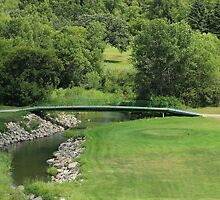 Bridge on a Golf Course by rhamm