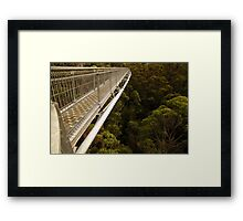 Walking in the treetops Framed Print