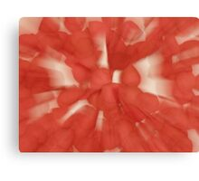 Zoom on petals Canvas Print
