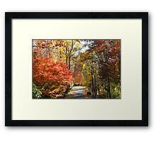 Brilliant Colors on a Fall Day Framed Print