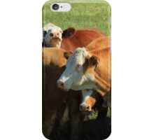 Cattle on the Prairies iPhone Case/Skin