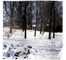 Today's snow, Ottawa, Canada Poster