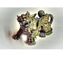 Brass Dragon Photographic Print