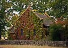 Gostwyk Chapel by Odille Esmonde-Morgan