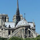 Notre Dame  by rocperk