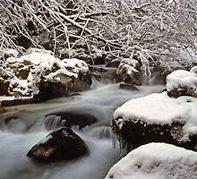 Zauberwald Stream - Winter 1985 by David J Dionne