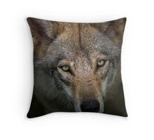 Sinister Appeal Throw Pillow