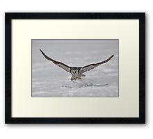 On the Fly...  Framed Print