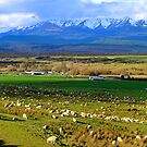 Te Anau Downs. South Island, New Zealand. by Ralph de Zilva