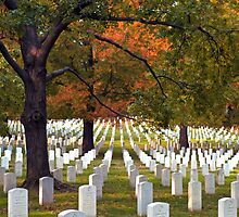 Arlington National Cemetery - #0426 by ©  Paul W. Faust