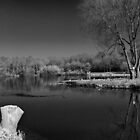 Capstone Lake B/W by larry flewers