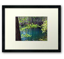 Spring at the Spring Framed Print