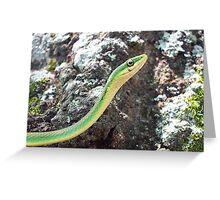 Vine Snake Greeting Card