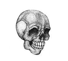 Pointillism Human Skull Photographic Print