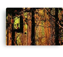 Rusty and Crusty Colors Canvas Print