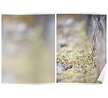 Moss Diptych Poster