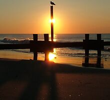 Stone Harbor sunrise by Frank Nave