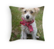 Sitting Pretty Throw Pillow