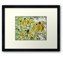 Rainy Day Sunshine  Framed Print