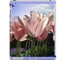 I Can See Right Through You iPad Case/Skin