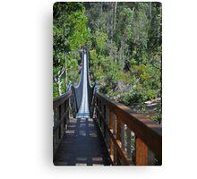 Swinging Bridges Canvas Print