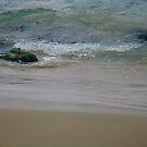 Laguna Beach Sea by E.E. Jacks