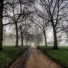 Fog in Green Park, London by NeilAlderney