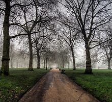 Fog in Green Park, London by NeilAlderney