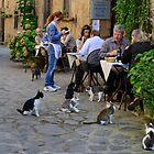 We recommend the fish! Civita di Bagnoregio, Lazio, Italy by Andrew Jones