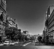 Calle de Alcala. (Madrid) by Alfonso Fernandez