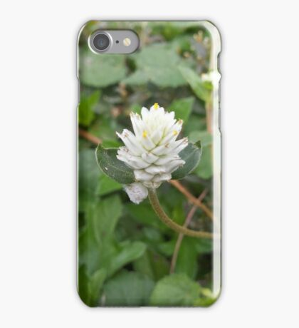 white Grass Flower iPhone Case/Skin