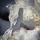 Ice  by Lynn Wiles