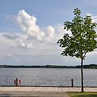 Swedish Summer Lake by Hilda Rytteke